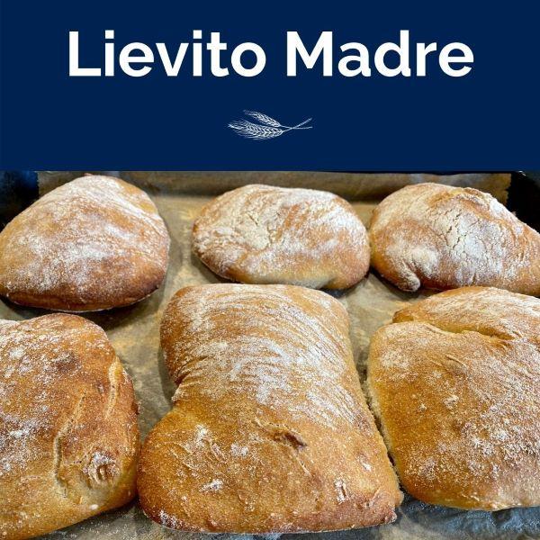 Lievito Madre Online